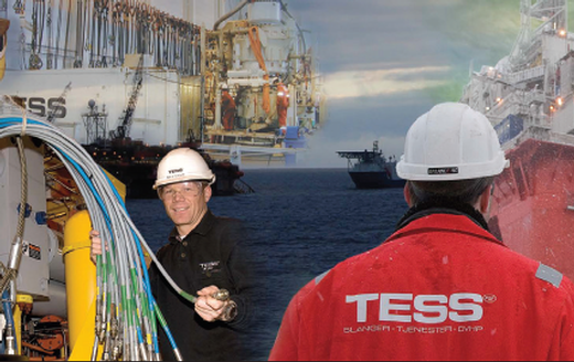 Read more about TESS AS