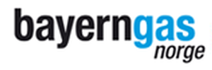 Logo for BAYERNGAS NORGE AS